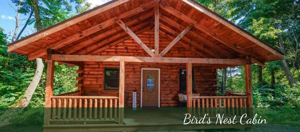 Birds Nest Cabin
