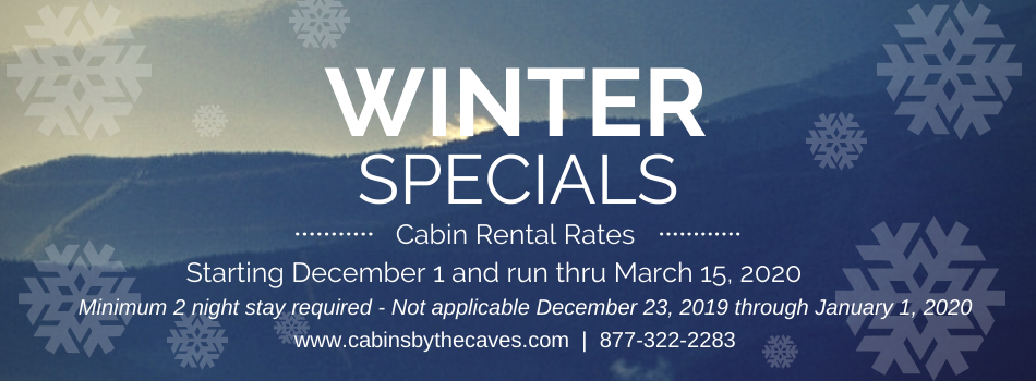 ad for winter rentals