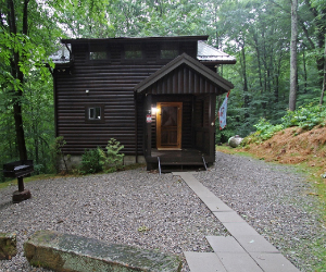 dark wood cabin with wooded area