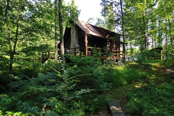 back of cabin, side view, green meadow look, tall trees, shade area