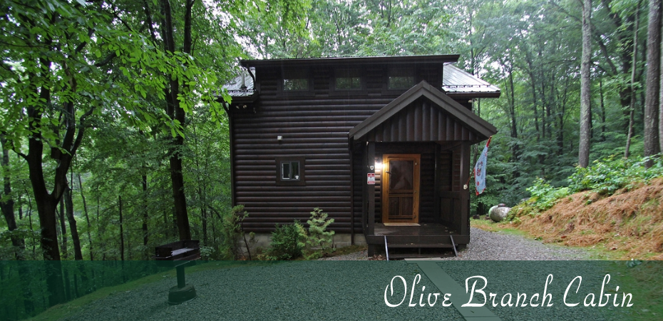 Olive Branch Cabin Hocking Hills Old Man 39 S Cave Ohio